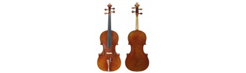 2 altos violoncelle